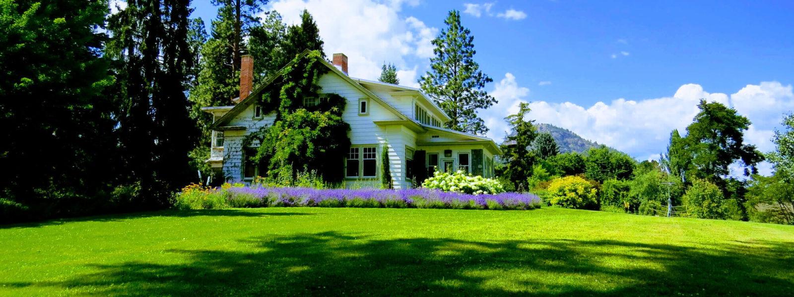 house&garden (1)
